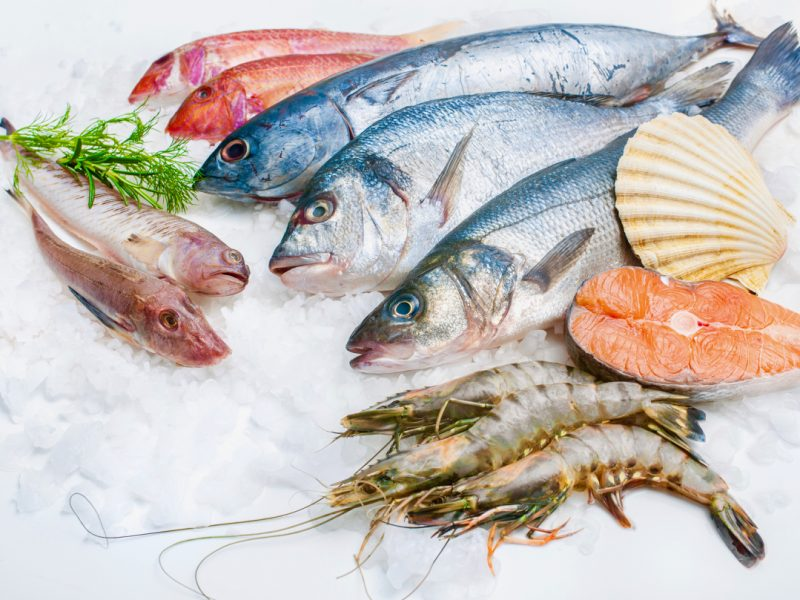 Sustainability seafood