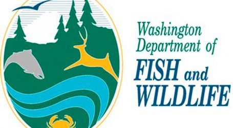 US agency alerts public to the lies by anti-fish farm activists