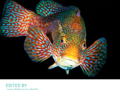 cleaner fish