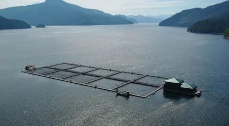 Canada to move ahead with a Federal Aquaculture Act