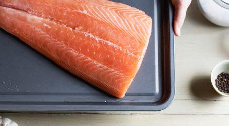 Value of B.C. farm-raised salmon climbing fast, industry report says