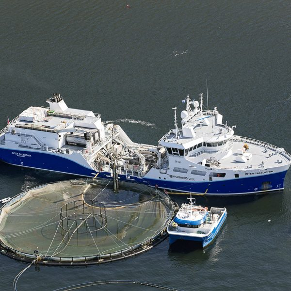 Aquaculture in B.C.