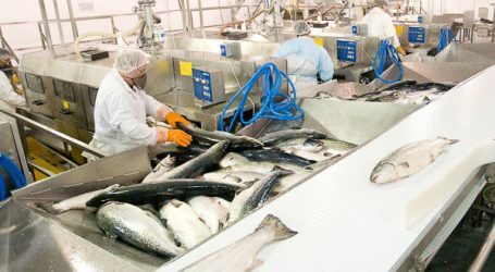 Fisheries summit to discuss Federal Aquaculture Act