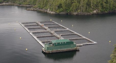 Why Canada needs to grow its aquaculture industry
