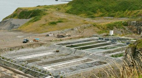 RAS in Peace: The quick and the dead in land-based fish farming