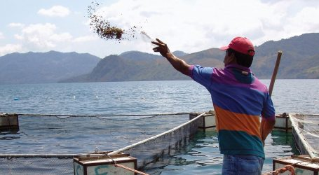 Asia-Pacific moves to strengthen Asian aquaculture governance