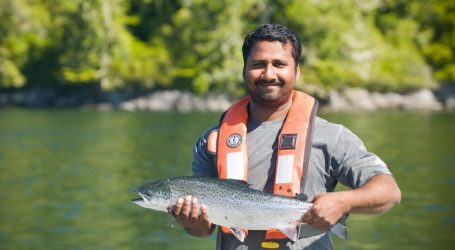 B.C. salmon farmers heed U.N.'s call to develop aquaculture industry