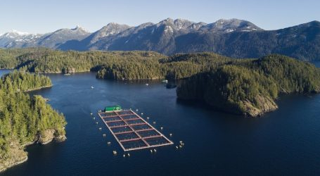 As Canada dithers, the world moves on with aquaculture