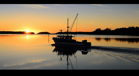 A new dawn for aquaculture in the Pacific Northwest