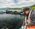 Canada sees net gains from proposed Aquaculture Act
