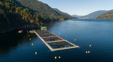 A September to remember for Grieg Seafood in BC
