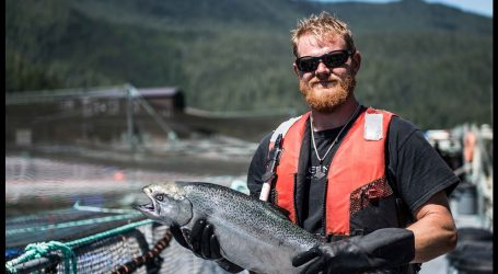 Salmon farmers propel food and beverage processors to record $10.5 billion in sales,