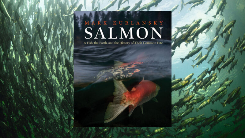"""Ousting ocean-based farms to grow fish on land not a good idea, says Mark Kurlansky, the New York Times bestselling author of """"Salmon"""", published by Patagonia."""