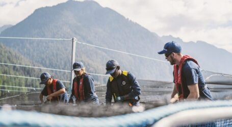 """While anti-farming opponents rely on outdated and fabricated misinformation to spin their fiction, the world is moving ahead with sustainable salmon aquaculture"""