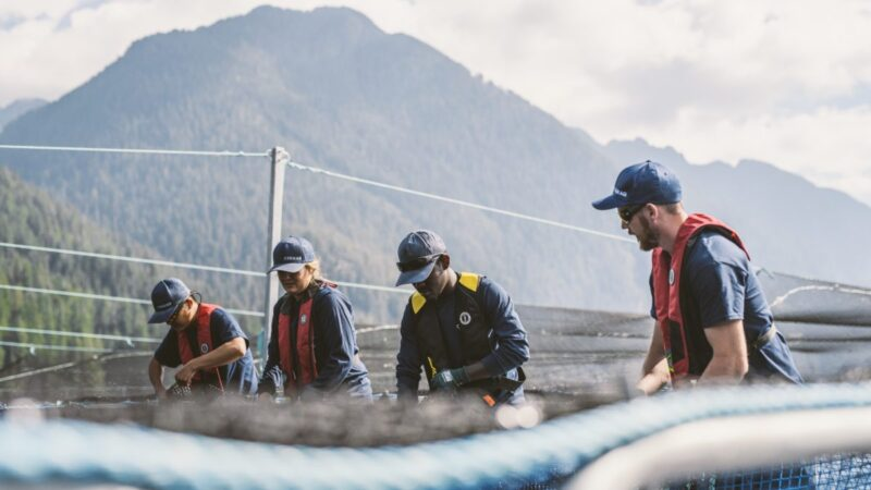 """""""While anti-farming opponents rely on outdated and fabricated misinformation to spin their fiction, the world is moving ahead with sustainable salmon aquaculture"""""""