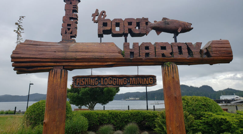 About 700 businesses in North Vancouver Island will be impacted by salmon farm closures in the Discovery Islands, says an independent economic recovery taskforce