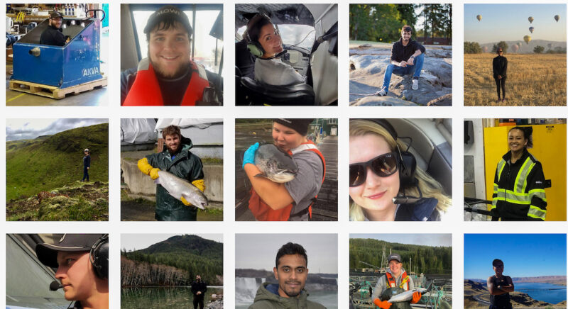 Decision to phase out salmon farms in BC's Discovery Islands is having a profound impact on young people, who once looked ahead to a long and positive career path in aquaculture