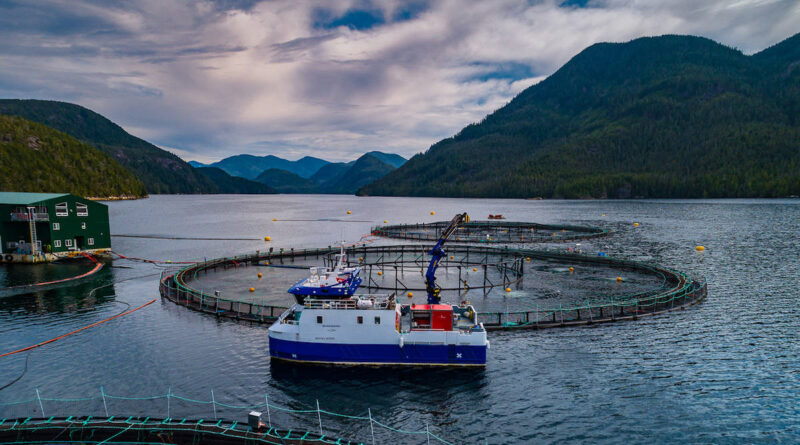 First-ever BC Aquaculture Innovation Awards announced as salmon farmers challenge Federal order to shut down their operations in the Discovery Islands.