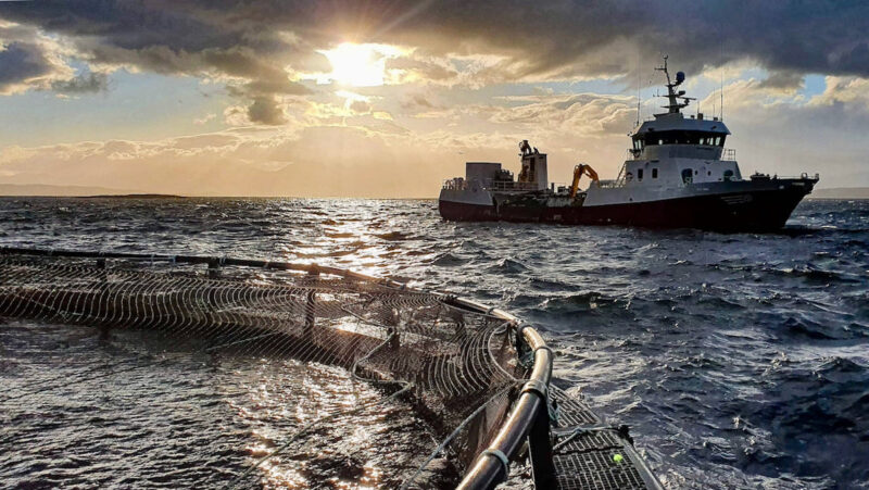Award winning technology from BC aquaculture company will protect Scottish salmon from potentially harmful plankton