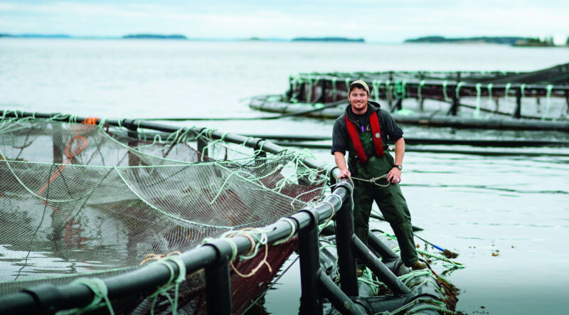 The Need for Canada to have a consistent regulatory framework for the aquaculture sector is on full display