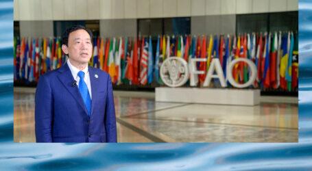 Aquaculture key to meet food demand, says UN