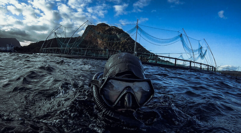 Misleading claims, erroneous statistics and out-of-context interviews dominate 'Shockumentaries' that pedal falsehoods about aquaculture, especially salmon farming.