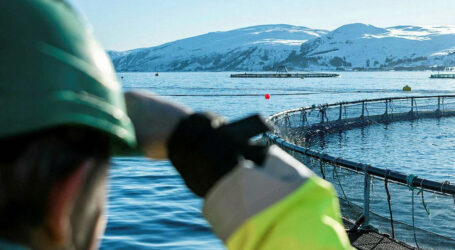 What Canada's next Fisheries Minister needs to do about aquaculture