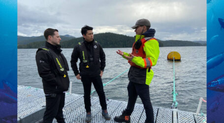 """""""Our salmon production is totally dependent upon a healthy ocean environment and we are on the seas constantly monitoring the waters we work in…not in some downtown Vancouver office creating fear mongering propaganda so that the activists can get a paycheck."""""""